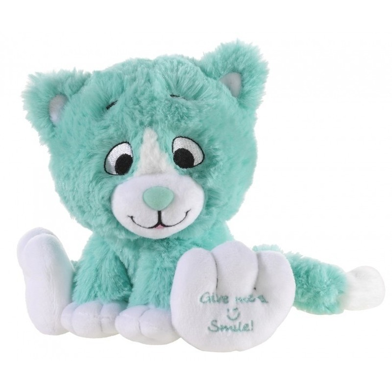 Mintgroene knuffel kat-poes Give me a smile 14 cm