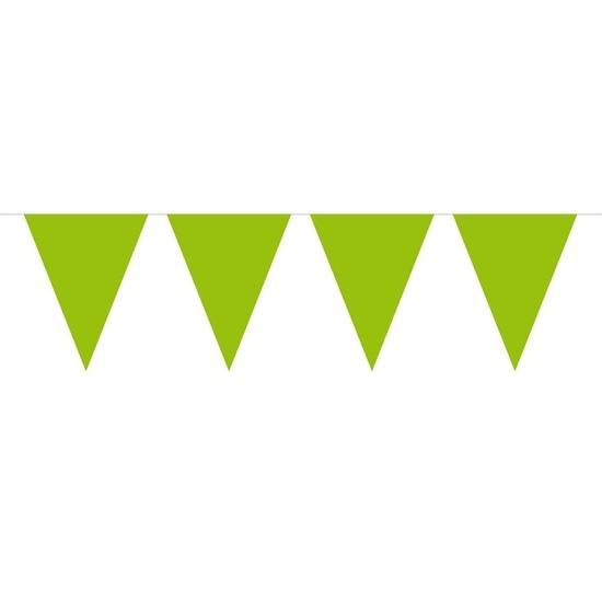 1x Mini vlaggenlijn - slinger lime groen 300 cm