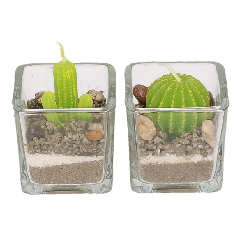 2x Cactus kaarsjes in glas 5 cm