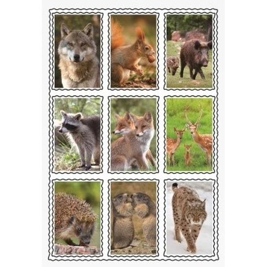 3D wilde dieren sticker set
