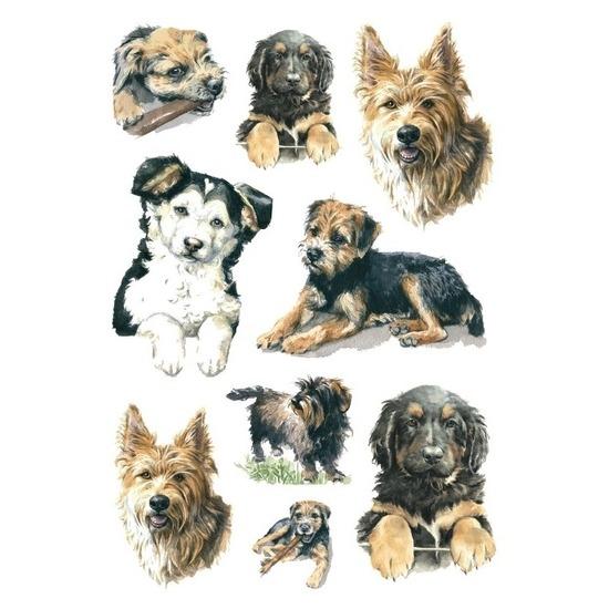 81x Honden/puppy dieren stickers