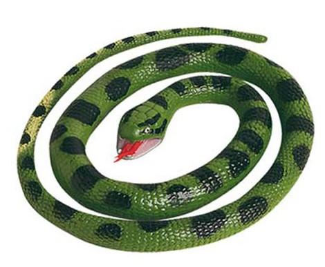 Anaconda's 66 cm rubber