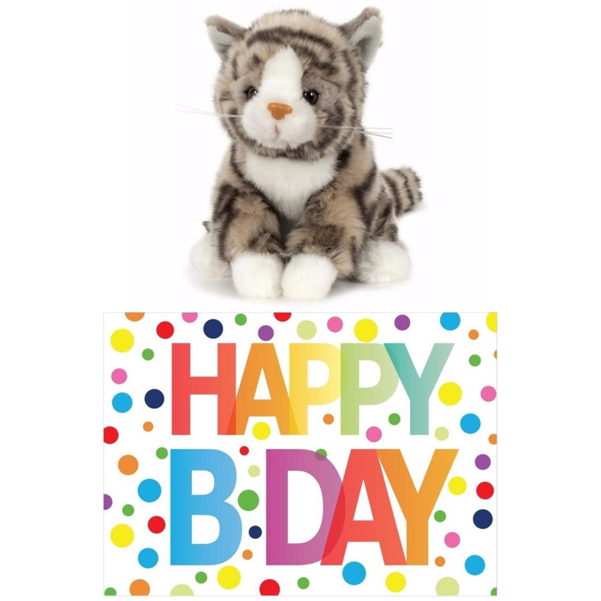 Cadeau setje pluche grijze kat/poes knuffel 16 cm met Happy Birthday wenskaart