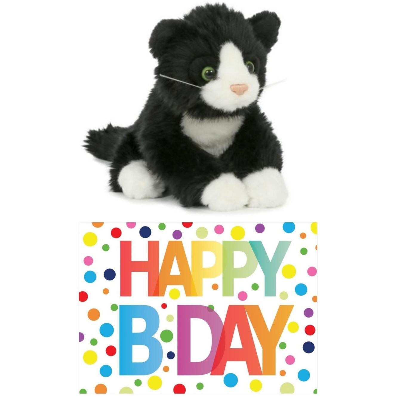 Cadeau setje pluche zwart/witte kat/poes knuffel 18 cm met Happy Birthday wenskaart