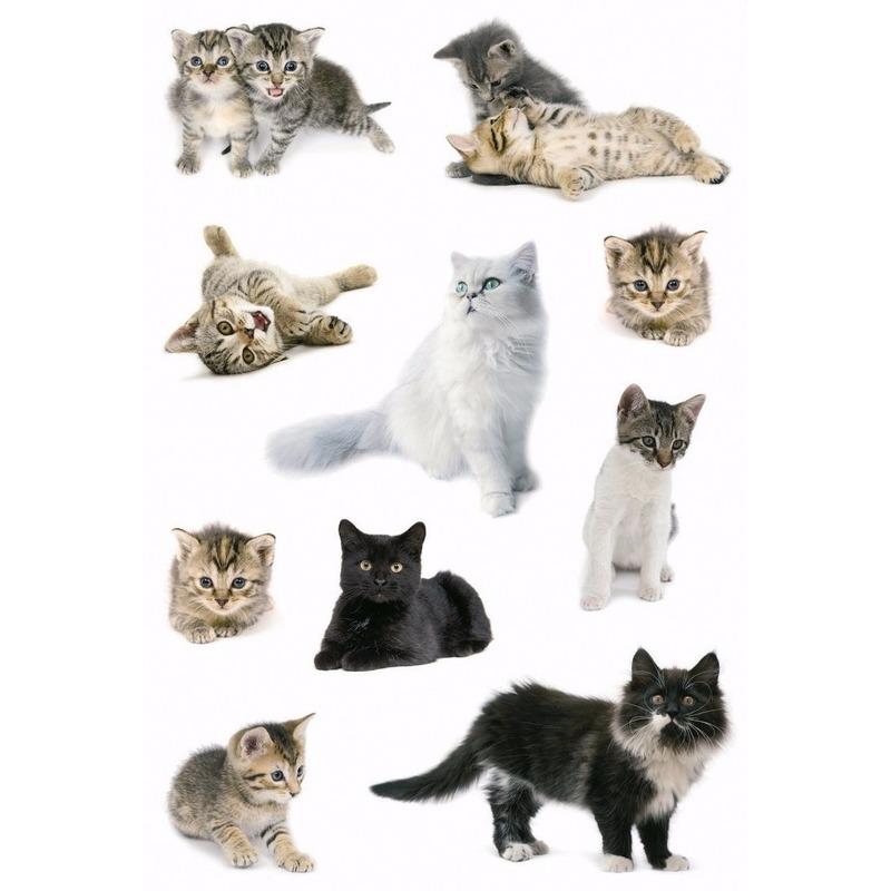 Decoratie katten stickers 3x