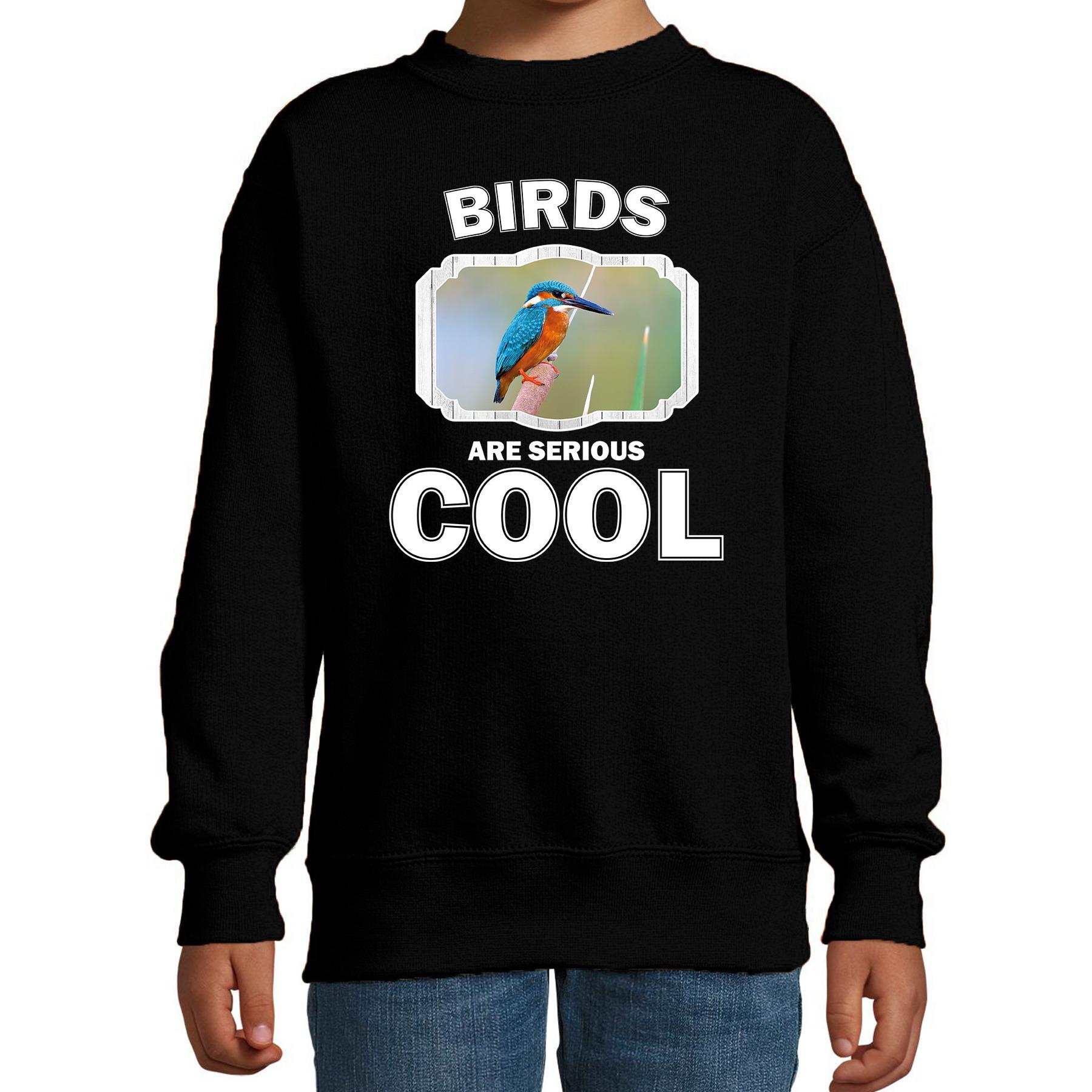 Dieren ijsvogel sweater zwart kinderen - birds are cool trui jongens en meisjes