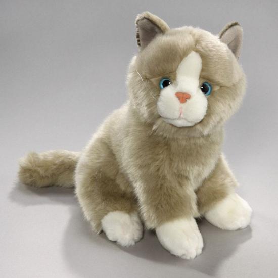 Grijs met witte Europese korthaar katten knuffel