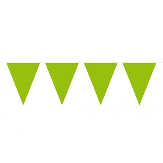 Groene slinger met vlaggetjes 10 meter