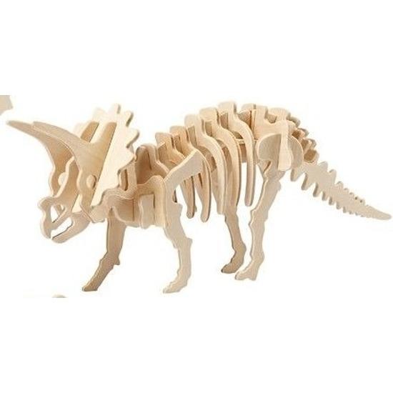 Houten Triceratops dinosaurier