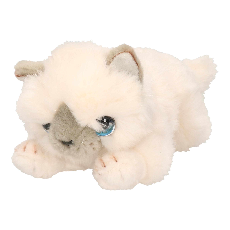 Keel Toys pluche witte katten/poes/poezen knuffel 25 cm