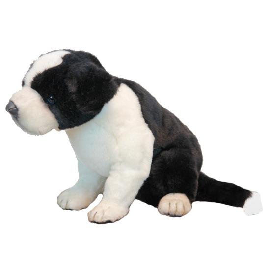 Levensechte Hansa pluche Border Collie pup knuffel 25 cm