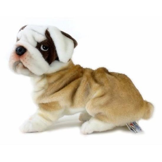 Levensechte Hansa pluche bulldog knuffel 30 cm