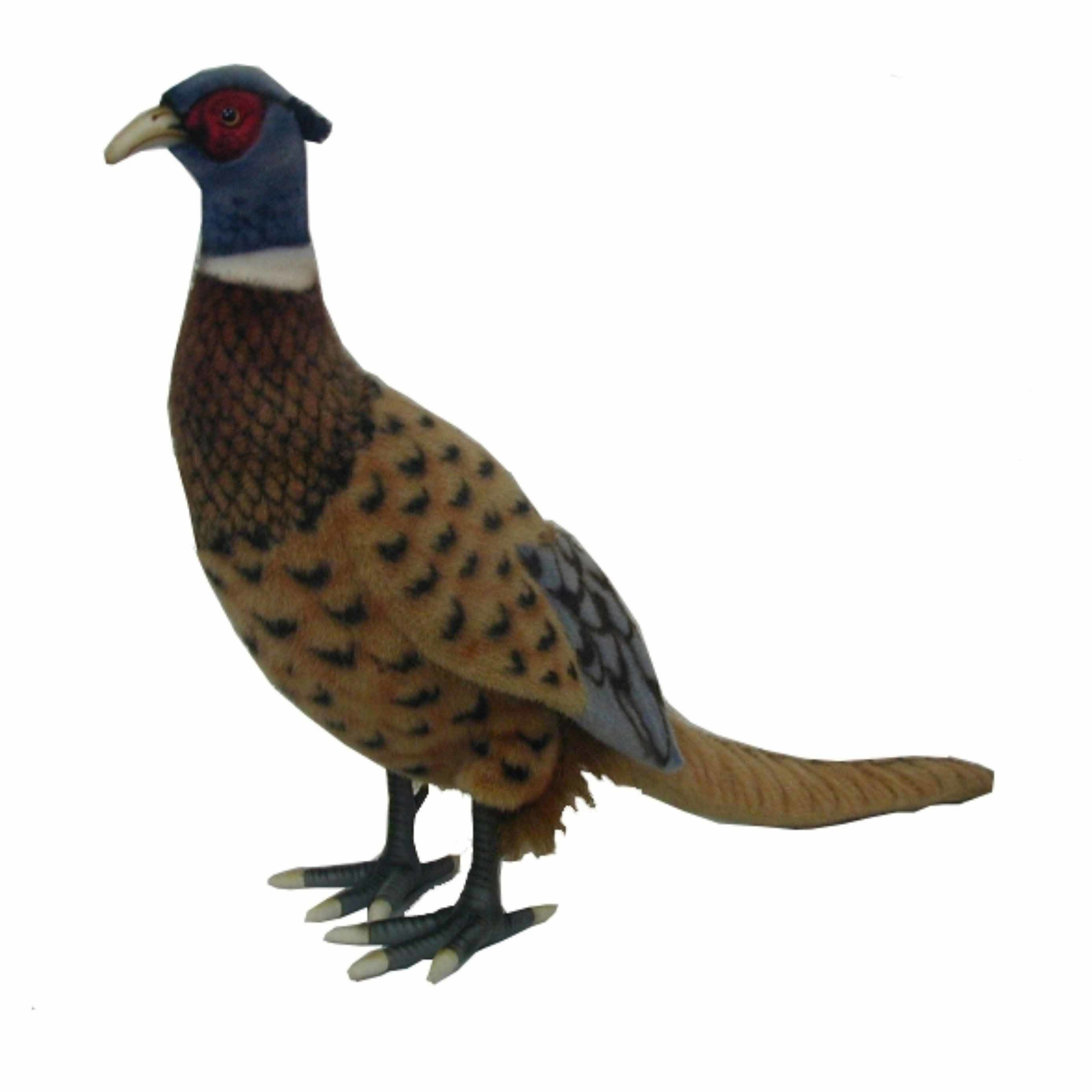 Levensechte Hansa pluche fazant knuffel 40 cm
