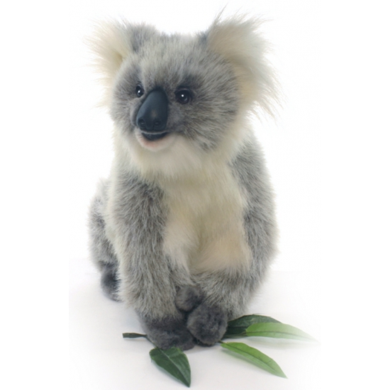 Levensechte Hansa pluche koala knuffel 23 cm