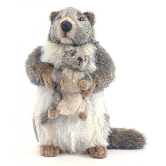 Levensechte Hansa pluche marmot knuffel 35 cm