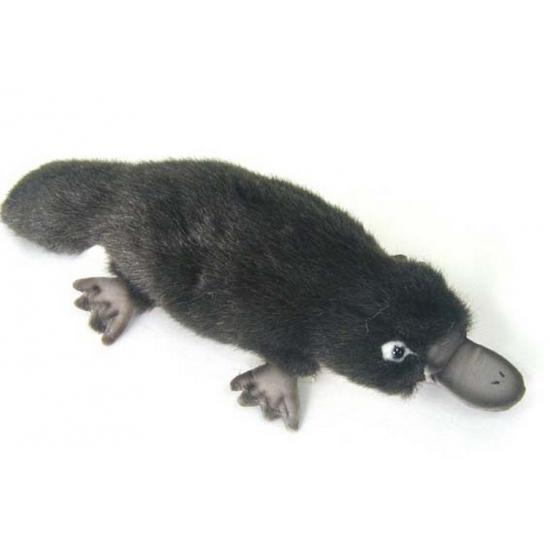 Levensechte Hansa pluche vogelbekdier knuffel 30 cm