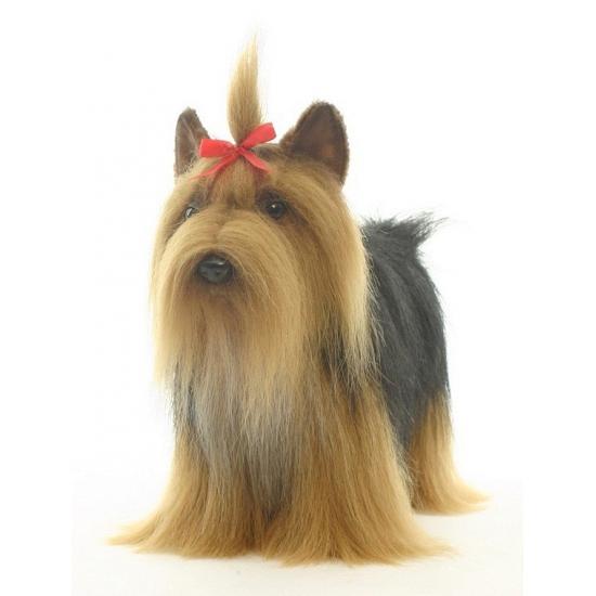 Levensechte Hansa pluche Yorkshire Terrier knuffel 38 cm