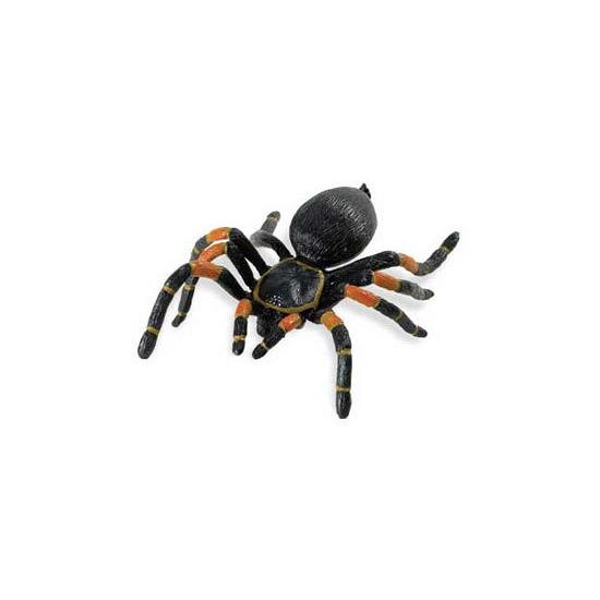 Nep tarantula spin
