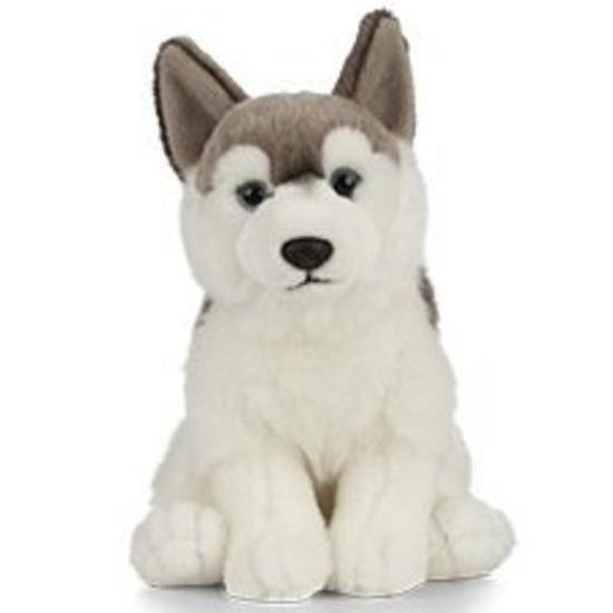 Pluche grijs/witte Husky hond/honden knuffel 25 cm speelgoed