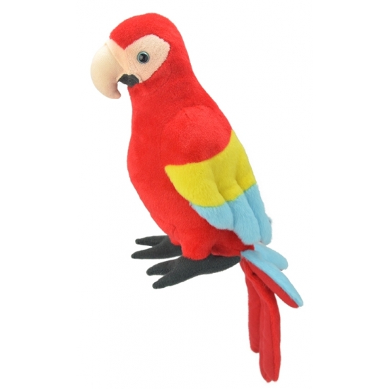 Pluche papegaai knuffel 38 cm