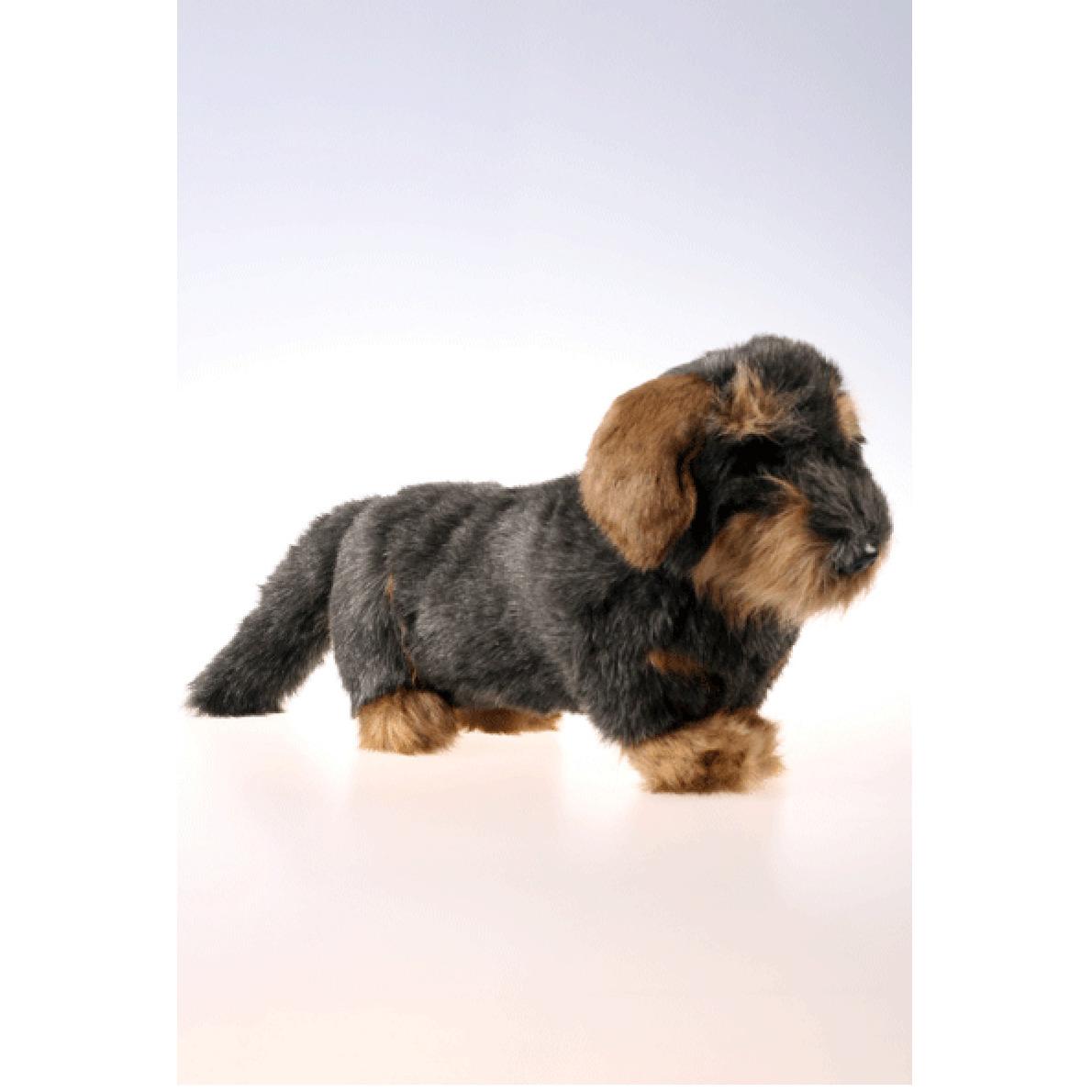 Pluche teckel hond langharig 45 cm