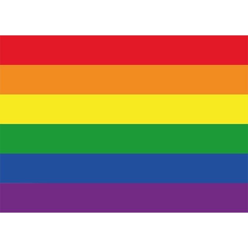 Regenboog vlag - LGBT vlag sticker 7.5 x 10 cm