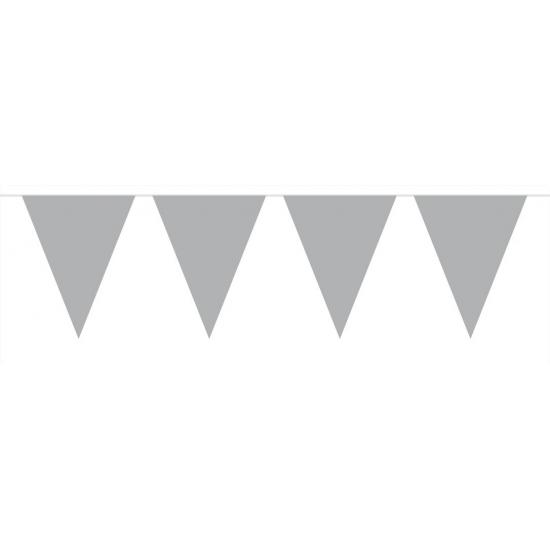 Zilveren vlaggentjes slinger 6 meter